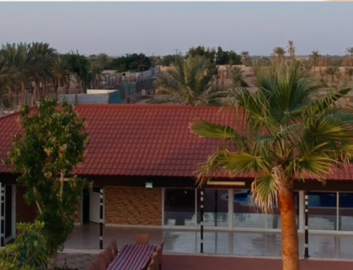 Farm House in Al Dhaid for Lease